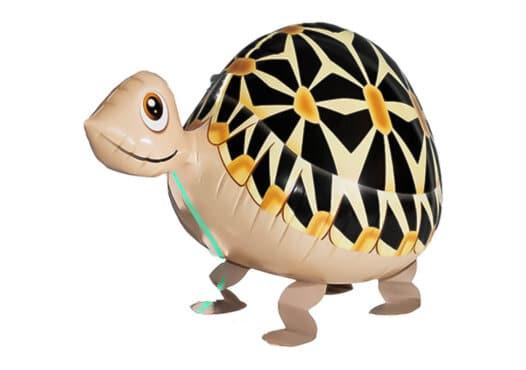 Schildkröte Airwalker
