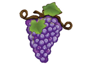 Weintraube Weinrebe Traube Luftballon